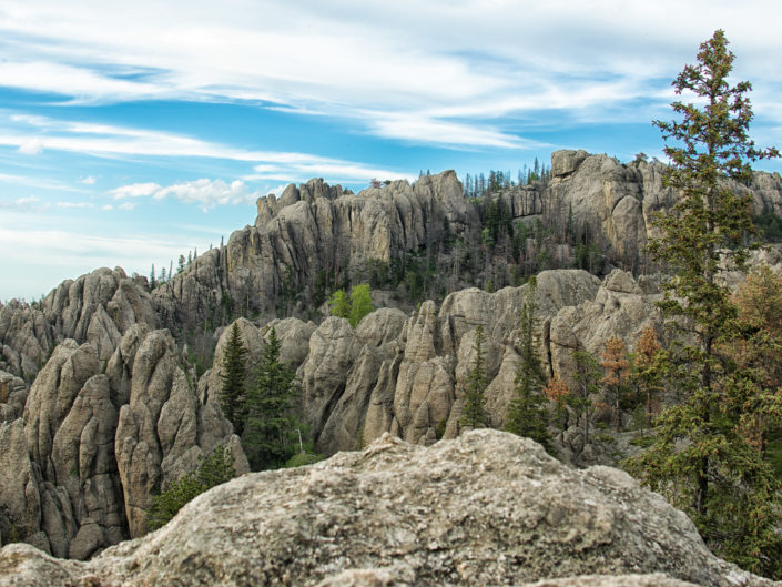 Rock Spires in the Black Hills of South Dakota