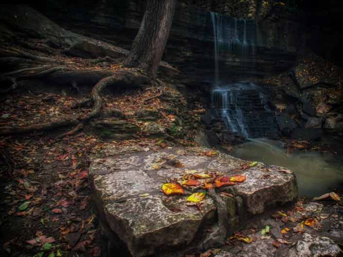 Autumn at Hidden Falls