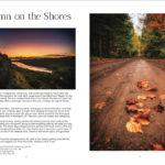 Autumn on the Shores